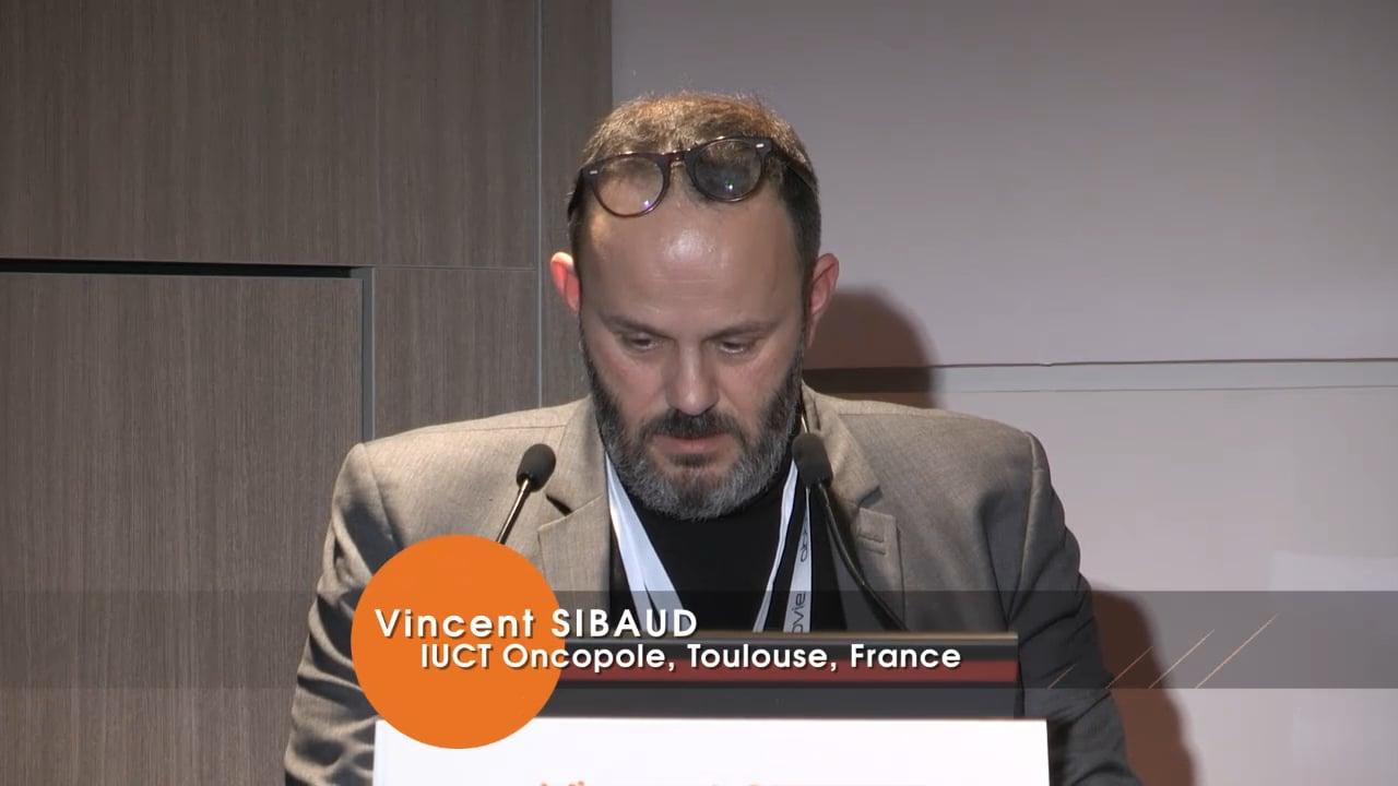 Vincent SIBAUD